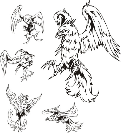 Predatory Bird Tattoos. Set of black and white vector illustrations. Vector