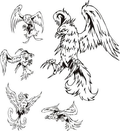predatory: Predatory Bird Tattoos. Set of black and white vector illustrations.
