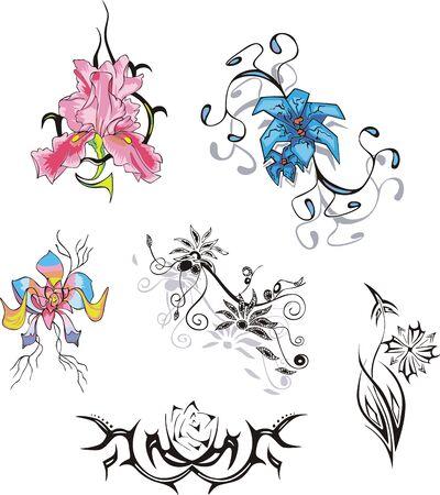 Set of flowers. Stock Vector - 14176249
