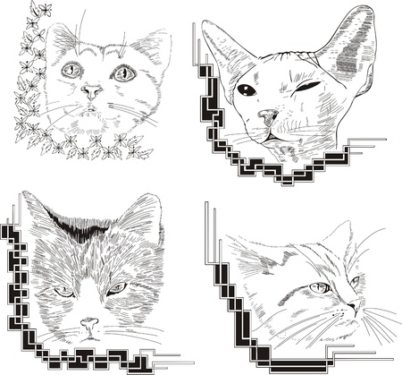 framed: Framed cat sketches.
