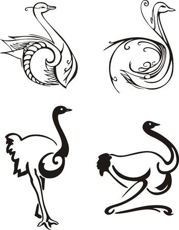 emu: P�jaros estilizados. Conjunto de ilustraciones en blanco y negro.