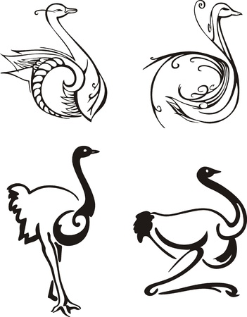 emu: Stylized birds. Set of black and white  illustrations.