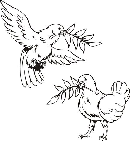 Doves with olive branches. Set of black and white vector illustrations. Vector