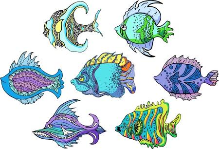 aquarian fish: Motley tropical fish. Set of color vector illustrations.