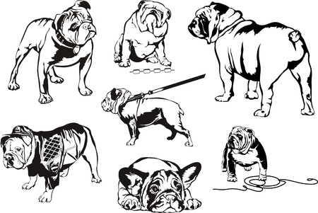 Bulldogs. Set of black and white vector illustrations.