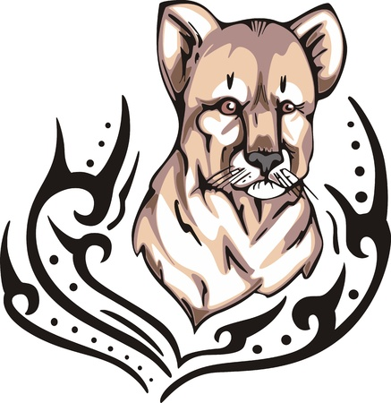 felidae: Tattoo with head of lion cub. Color vector illustration.