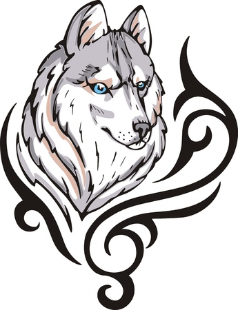 Tattoo with wolf head. Color vector illustration. Vector