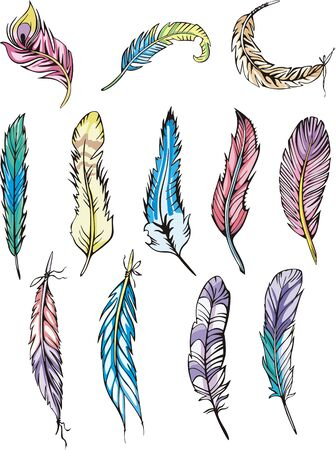 motley: Miscellaneous motley feathers. Set of color vector illustrations.