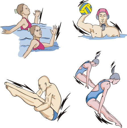Water sports: Synchronized swimming, Water Polo and Diving.  Vector