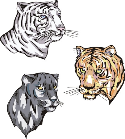 felidae: Totems - panther and tiger with solar signs. Set of vector illustrations.