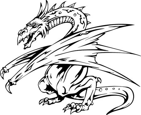 drago alato: Dragon Tattoo. Indietro e illustrazioni vettoriali bianchi.