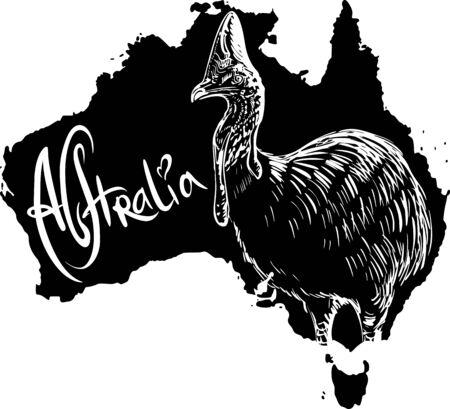 cassowary: Cassowary on map of Australia. Black and white vector illustration.
