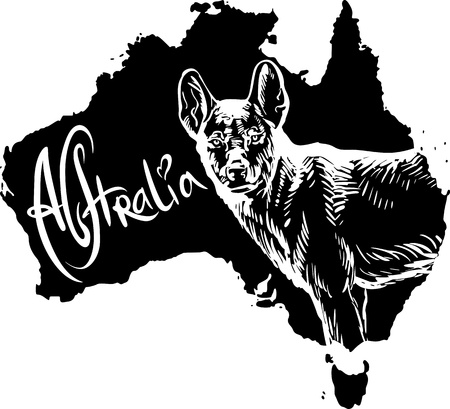 Dingo on map of Australia. Black and white vector illustration. Stock Vector - 15783313