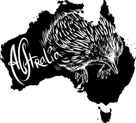 echidna: Echidna on map of Australia. Black and white vector illustration. Illustration