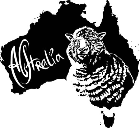 ewe: Merino ewe on map of Australia. Black and white vector illustration. Illustration