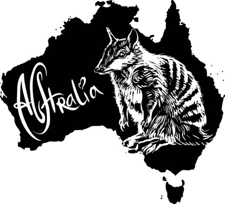 Numbat (Myrmecobius fasciatus) on map of Australia. Black and white vector illustration. Stock Vector - 15783348