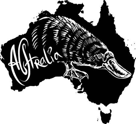 platypus: Platypus (Ornithorhynchus anatinus) on map of Australia. Black and white vector illustration. Illustration