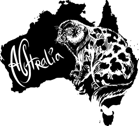 Spotted cuscus on map of Australia. Black and white vector illustration. Stock Vector - 15783356
