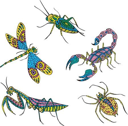 motley: Stilizzati multicolori insetti. Set di illustrazioni a colori.