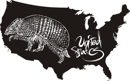 Armadillo and U.S. outline map. Black and white vector illustration. Illustration