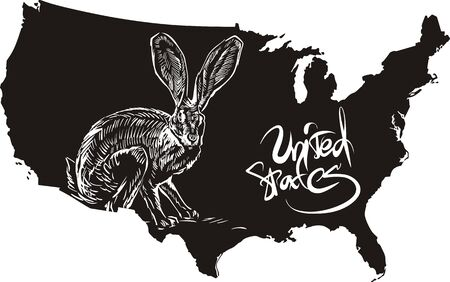 jackrabbit: Black-tailed jackrabbit and U.S. outline map. Black and white vector illustration. Lepus californicus.