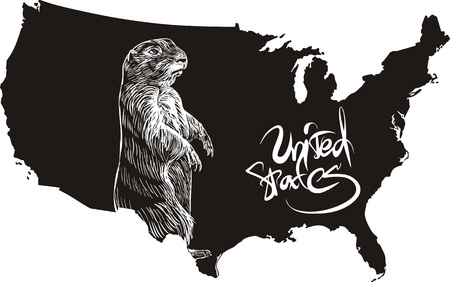 Marmot and U.S. outline map. Black and white vector illustration. Vector