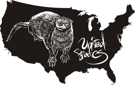 loutre: Otter et US fond de carte. Noir et blanc illustration vectorielle.