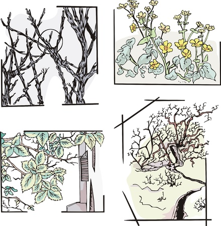 bodegones: Floral bodegones. Conjunto de bocetos.