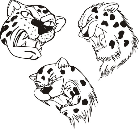 Aggressive leopard heads. Set of black and white vector tattoo designs. Illustration