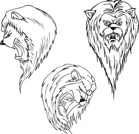 Aggressive lion heads. Set of black and white vector tattoo designs. Vector