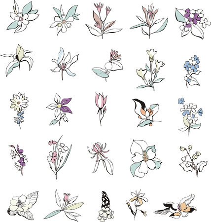 Simple flower sketches. Set of color vector illustrations. Vector
