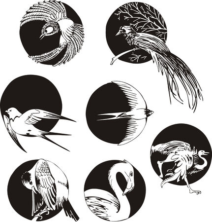 Round designs with birds. Set of black and white vector illustrations. Vector