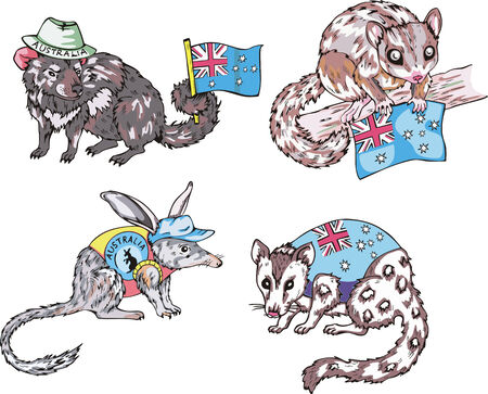 australian animal: Varios animales australianos con banderas. Conjunto de ilustraciones vectoriales.