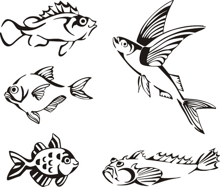 Black and white fishes. Set of black and white vector illustrations.