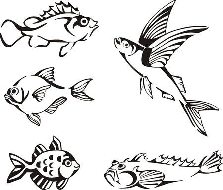 Poissons en noir et blanc. Ensemble de noir et blanc des illustrations vectorielles.