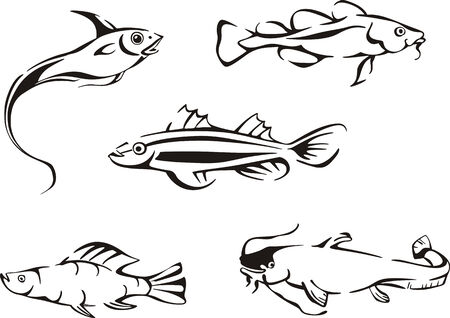 Black and white fishes. Set of black and white vector illustrations. Vector