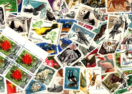 definitive: Nature and fauna. Background of the postage stamps issued in the Soviet Union (USSR). Stock Photo