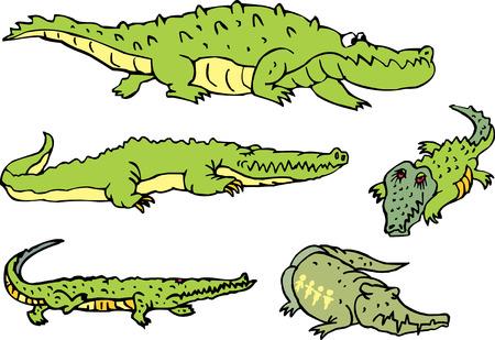 Ensemble de mensonge et de marcher alligators et crocodiles comiques amusants. illustrations vectorielles.