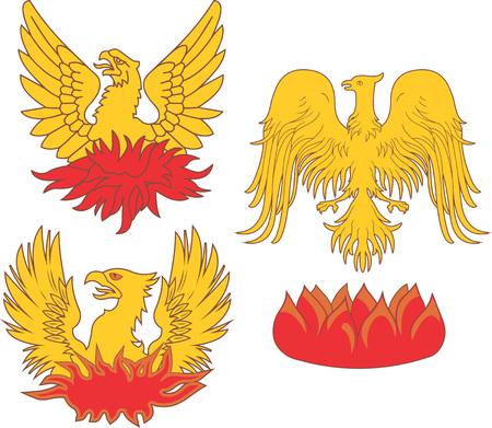 Set of heraldic phoenix birds. Vector illustrations. Illustration
