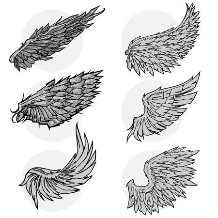 cross and wings: conjunto de ala de vector  Vectores