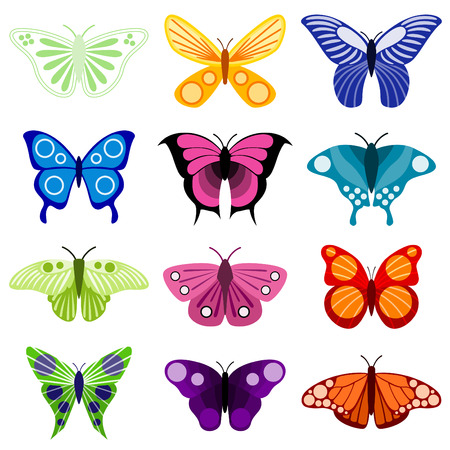 butterfly set Stock Vector - 8129253