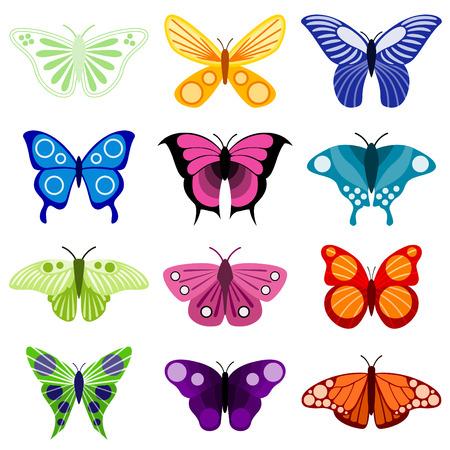 aerial animal: butterfly set  Illustration