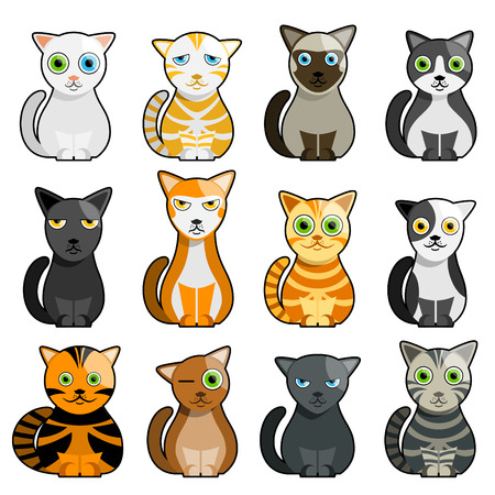 gato caricatura: conjunto de gato de dibujos animados  Vectores