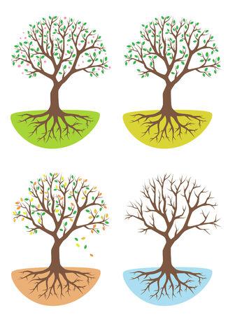 bonsai: tree icon set