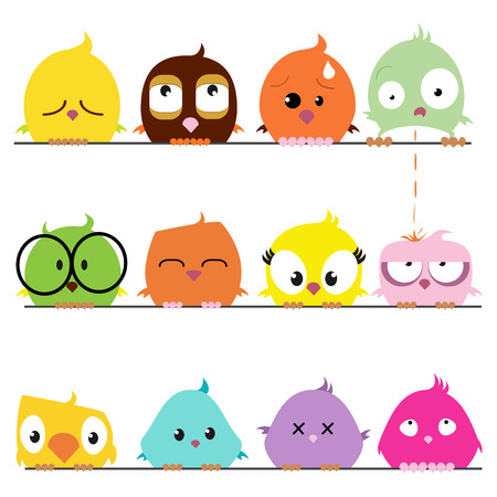 cute: cute Birds-set  Illustration