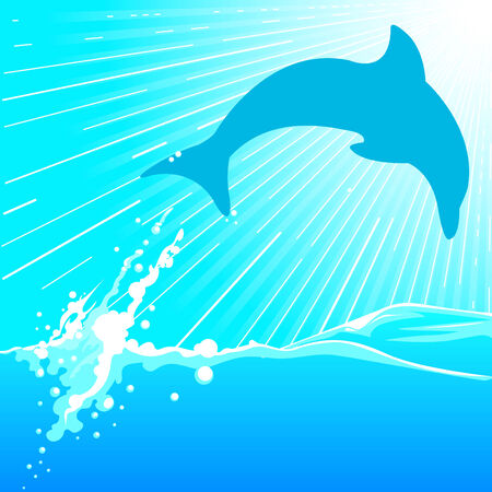 dolphin Stock Vector - 8566850