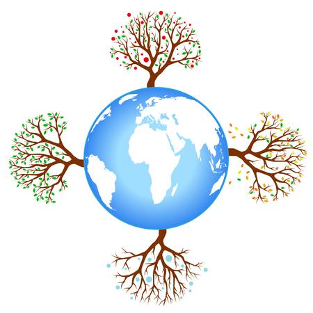 four season tree with earth  Vector