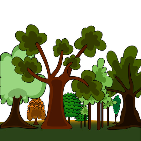 cartoon style forest  Illustration
