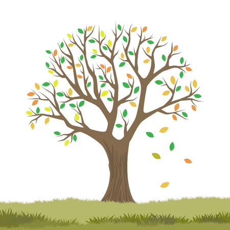 autumn tree Stock Vector - 11131239