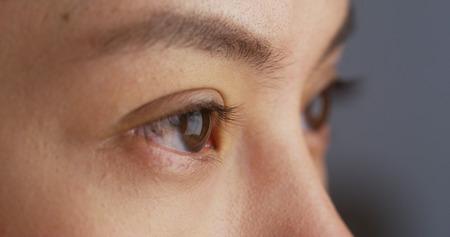ojos marrones: Cerca de los ojos de la mujer de la raza mezclada Foto de archivo
